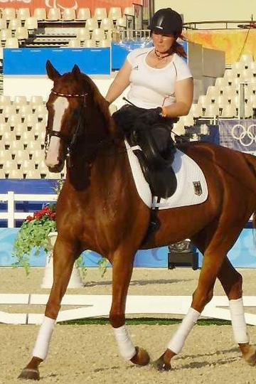pferd_londria